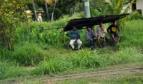 Fijian workers at bus stop