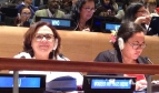 Juneia Batista represented the PSI Women's Committee at the UN OWG8 meeting