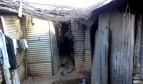 Shack used as housing for Indian metro workers