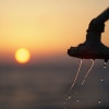 shower at sunset